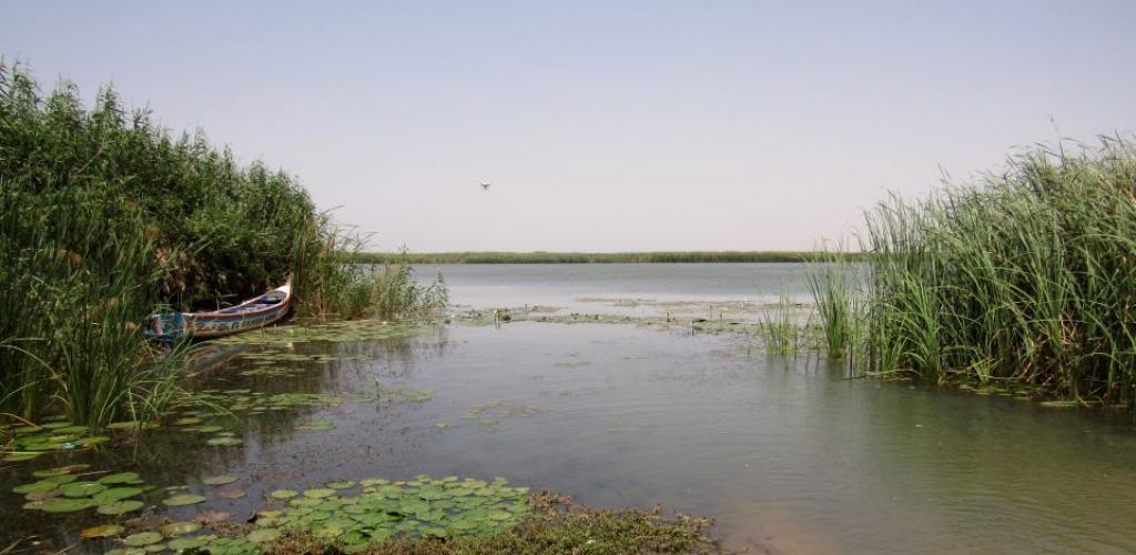 Un corps sans vie retrouvé dans le lac de guiers!